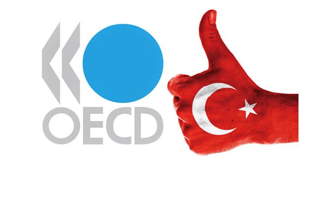 OECD_REPORT_TURKEY